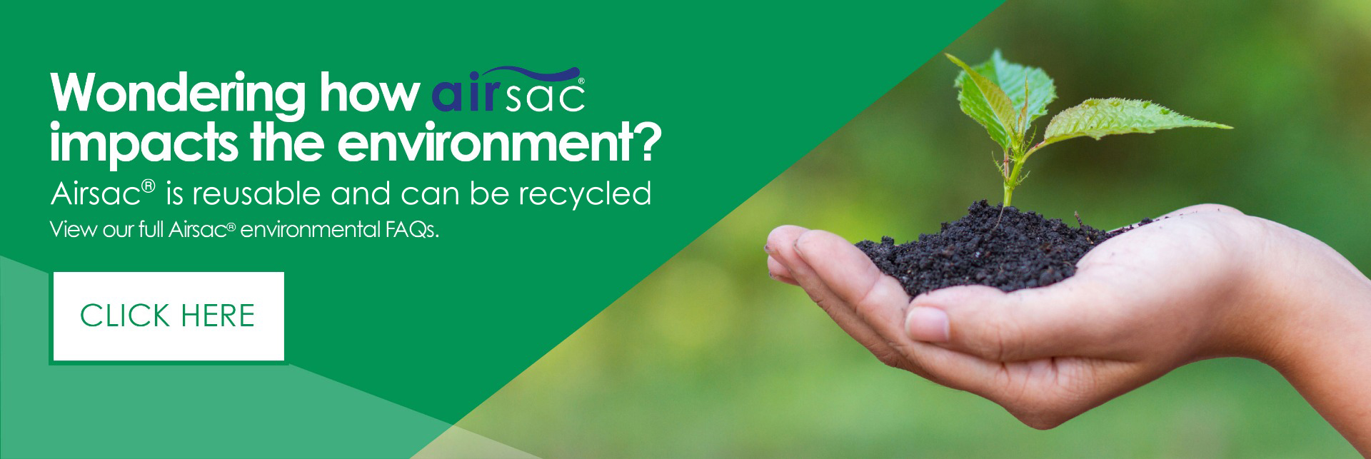 Airsac and the environment